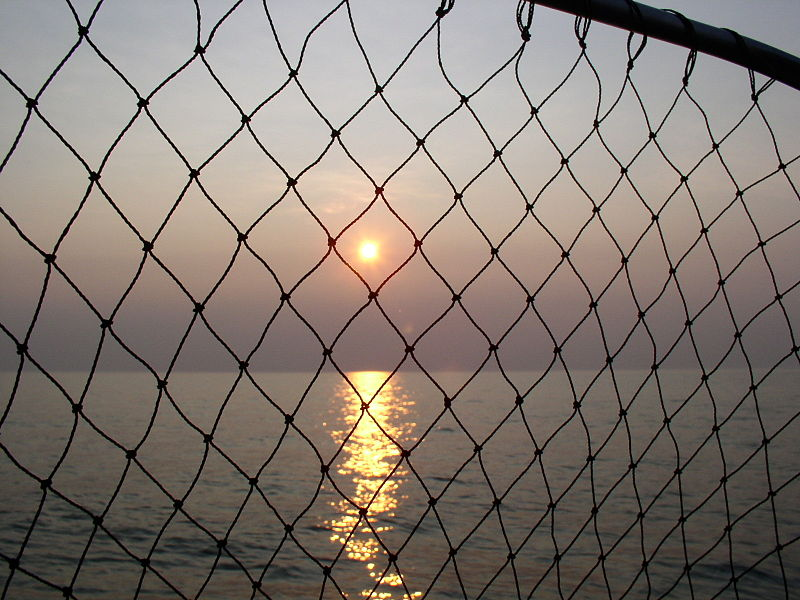 Fishing_Net.JPG